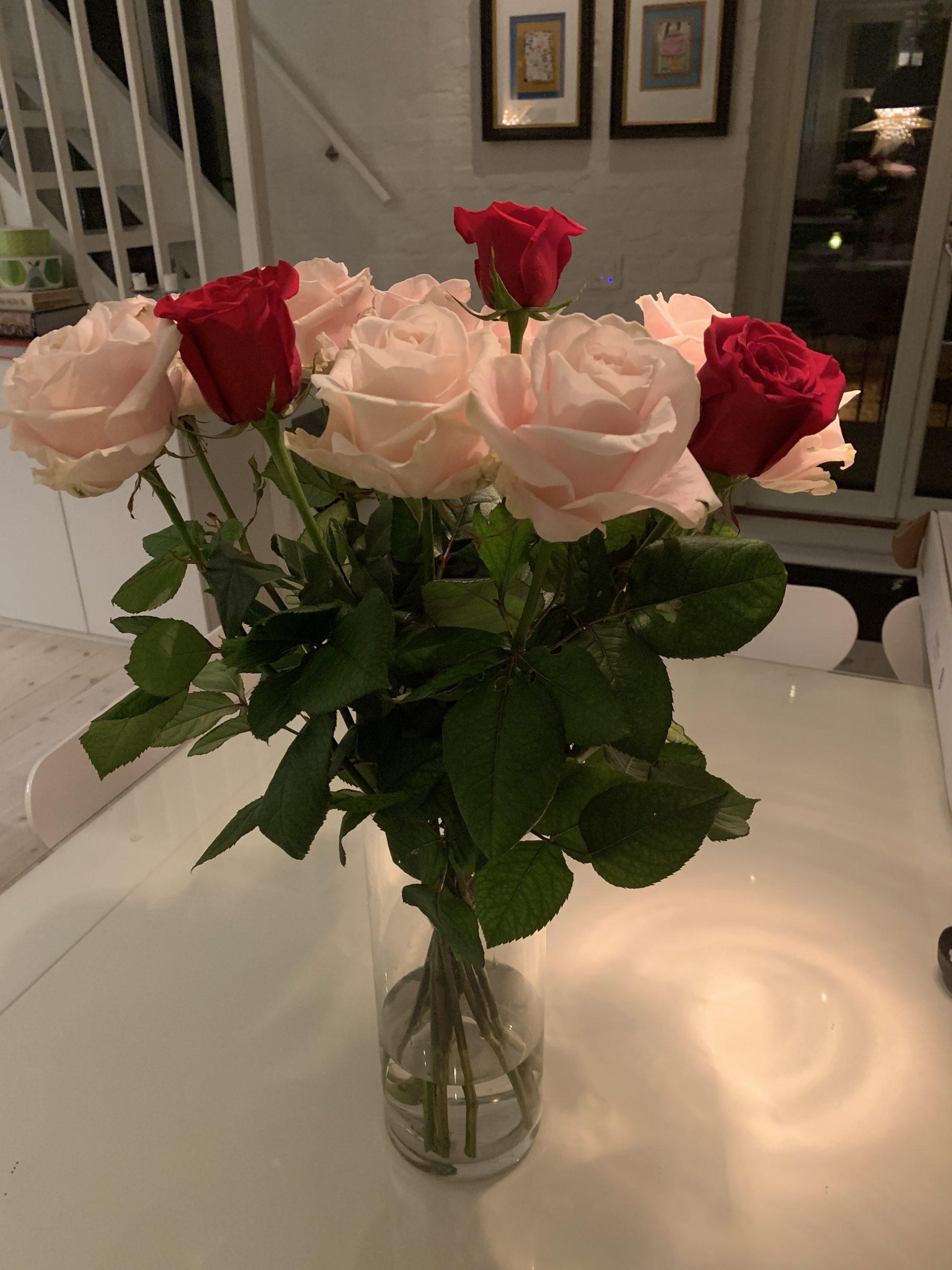 Vilka vackra rosor!