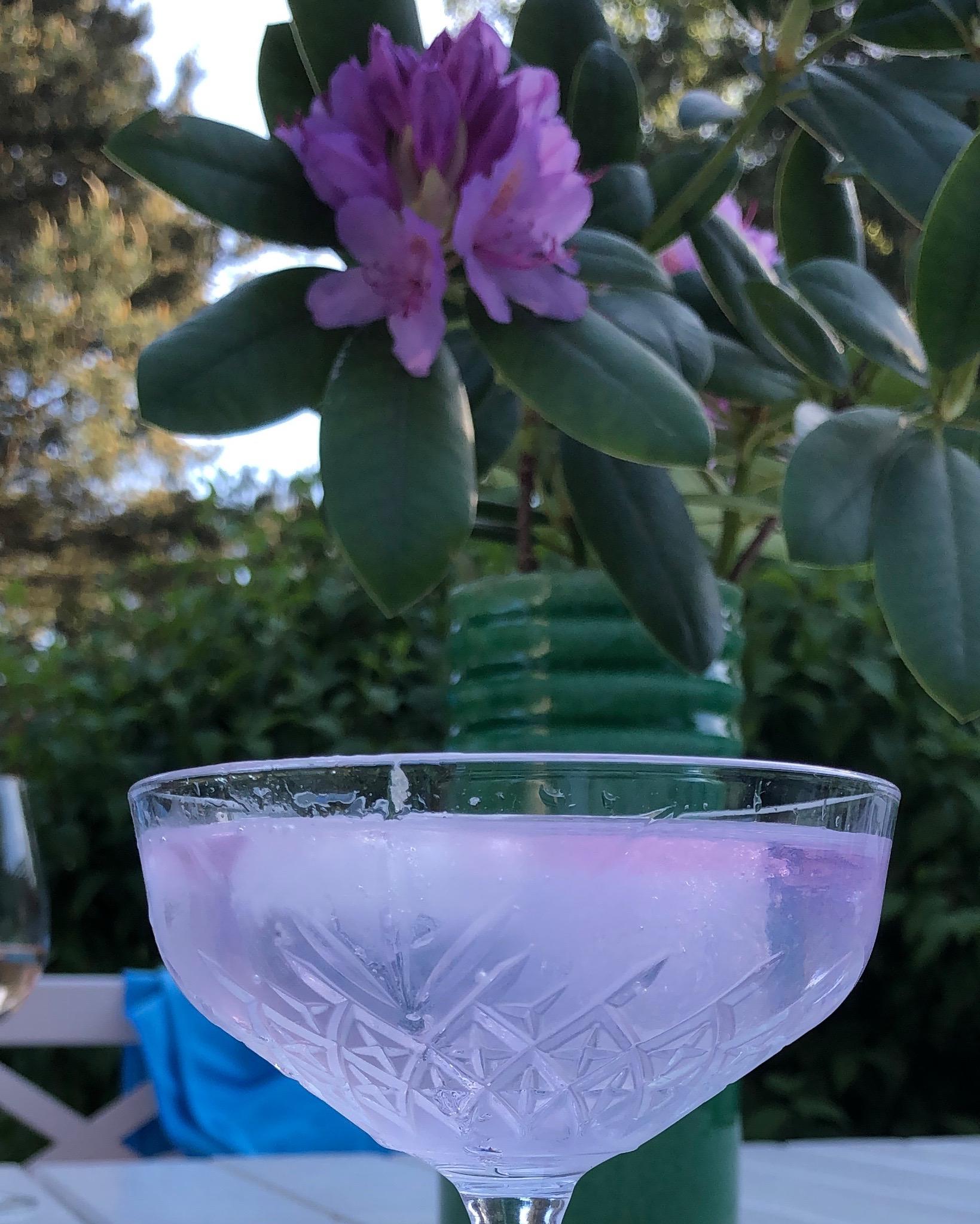 Pink gin är gott!