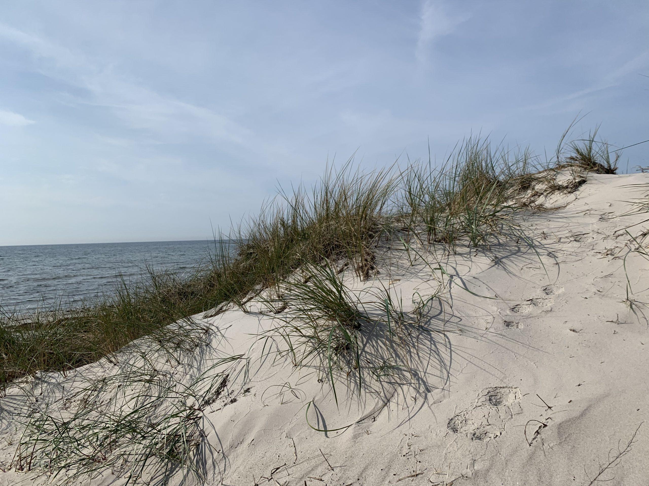 Vår vackra strand – Kämpingestranden