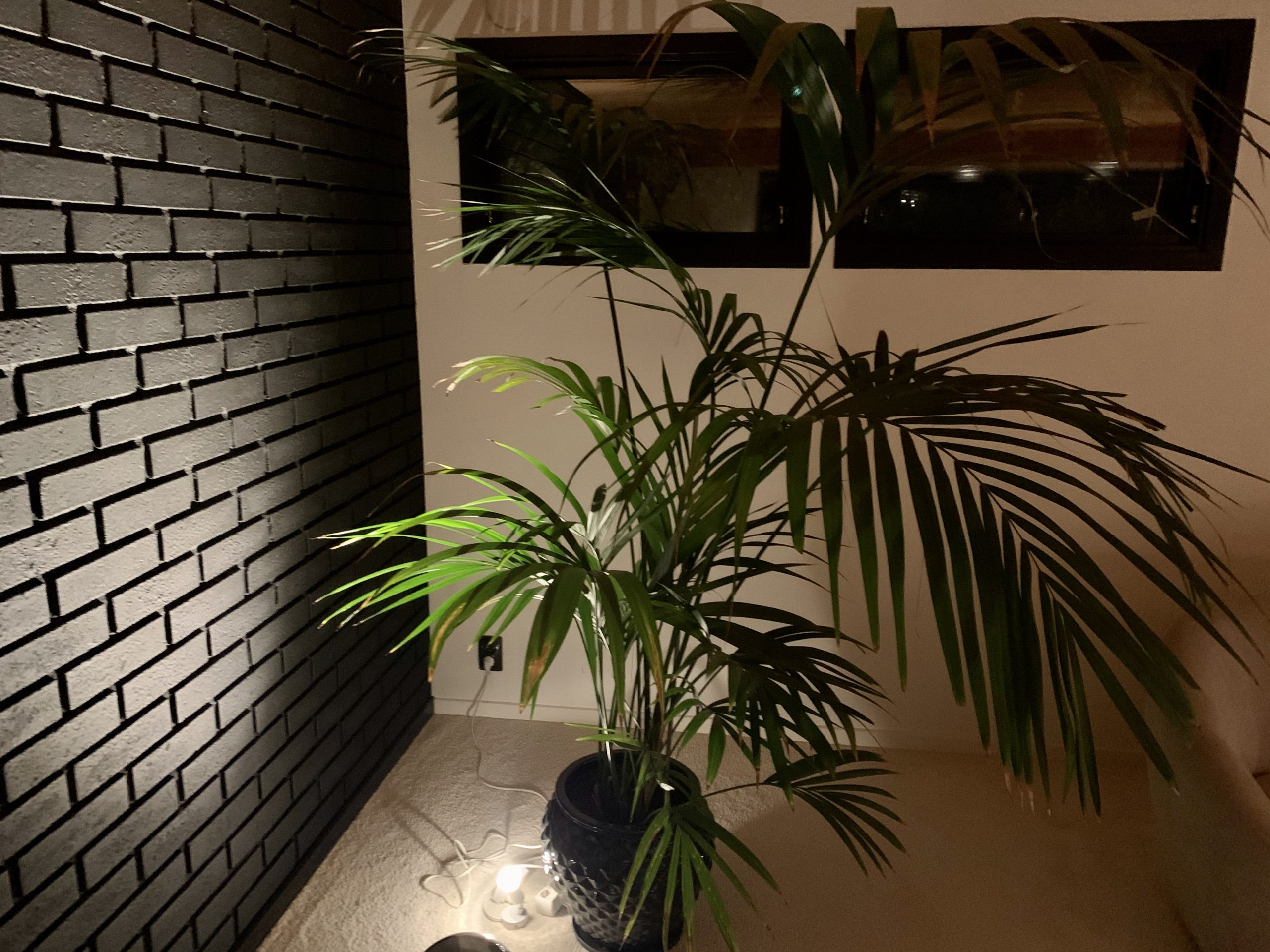 Cool svart tegelvägg